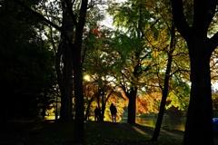 公園影絵 <2>