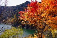 豊平峡ダム 5