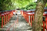 貴布禰神社.