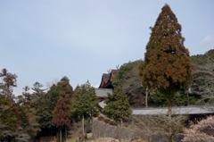 備中国一宮 吉備津神社 廻廊ー南随神門ー本殿・拝殿