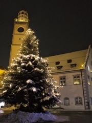 Baum und Turm