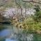 春の静寂2