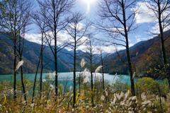 輝く白水湖