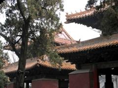 孔子廟 屋根飾り