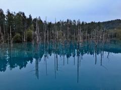 神秘の青い池