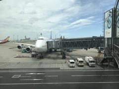帰ってきました日本