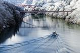 庄川峡遡上