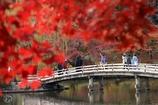 紅葉狩りの庭園