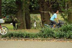 さまざまな人のための公園