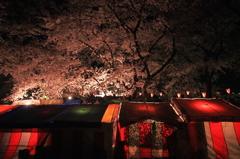 夜桜の喧騒も嘘のように静まり夜店も眠りに