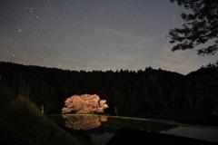 山深き諸木野の里に桜行燈が灯る夜