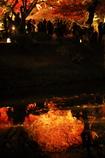平等院の池に写る燃えるような紅葉