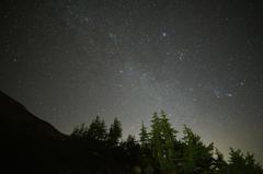 森林限界の先の星たち
