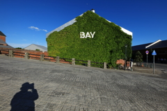 蔦の絡まる金森倉庫とオッサン・セルポ