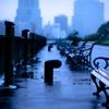 Rainy day Blue