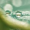 水の惑星(ほし)