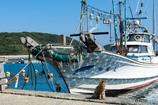 漁船としーちゃん