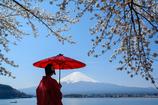 相合い傘-富士と桜と紅傘と-