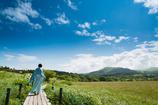 青空が導く場所へ~八島ヶ原湿原をゆく~