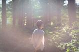 光包-安曇野の不思議の森-