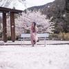 SAKURA ダンス