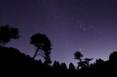 星の輝く夜に
