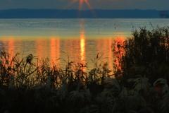 焦げる湖畔、