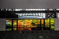京都駅の秋景色