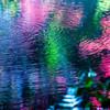 Colors / Dance