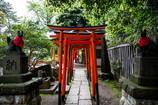 根津神社の乙女稲荷