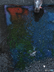 雨の門仲4