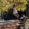 秋の密かな愉しみ3