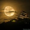 立待月の夜