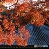 西林寺にて3