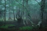 大板屋名月の森2