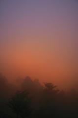 霧の中より見る朝焼け