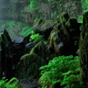 ウラミの滝(2)