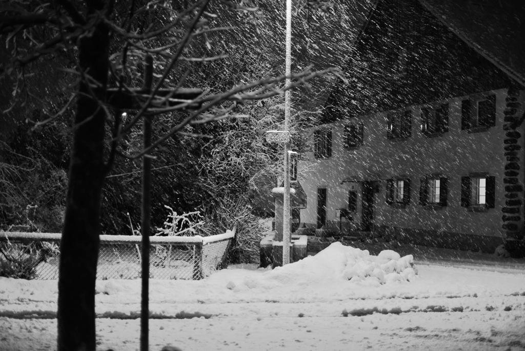 雪が降る1
