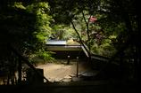 立田公園 1