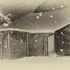 雪の降る日 2