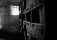 NIKON NIKON D800で撮影した(ワイン樽)の写真(画像)