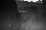 霧の中で 3