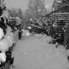雪が降る 1
