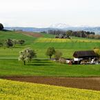 NIKON NIKON D200で撮影した風景(春爛漫)の写真(画像)
