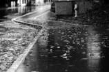 雨の中 2