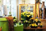 向かいの花屋さん 1