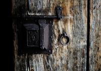 NIKON NIKON D800で撮影した(扉)の写真(画像)