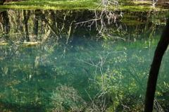 秋の終りの丸池様-5