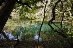 秋の終りの丸池様-1