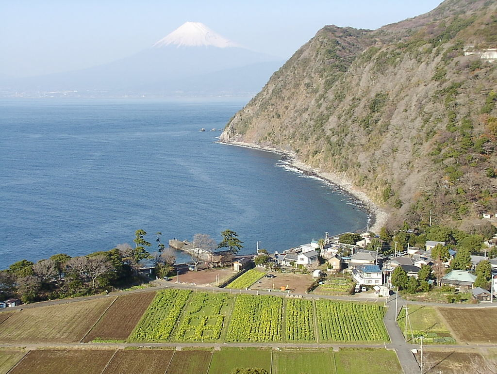 井田村から富士山を望む